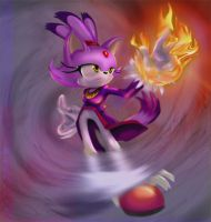 Blaze the Cat by basta6