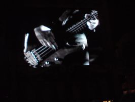 Muse, Chris's bass by animeanimal