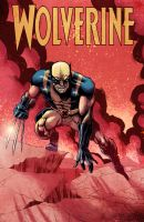 Wolverine-3 by Marcelo-Costa