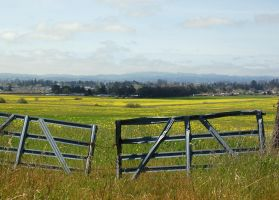 The Gate, on Petaluma Hill Rd. by smfoley