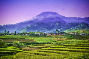 lovely Indonesia by ReisLie