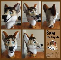 Sam the Coyote by ScardyKat