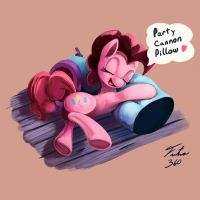 Cannon Pillow_Kallisti IV Request 2 by Tsitra360