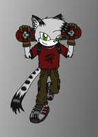 The Skaters - Bruce The Cat by BrownFox