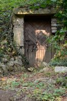 Forest Door 1 by Lakela