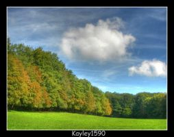 Autumn's Coming.... by Kayley1590