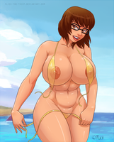 Velma commission by Flick-the-Thief