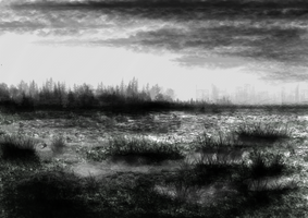 Swamp near the City by Acanthaceae