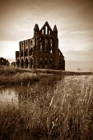 Whitby Abbey by Gallery-North