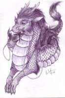 Chinese dragon 2 by nirac
