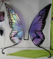 Ginormous Butterfly Wings by FaeryAzarelle