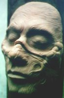 Zombie Sculpey Face 1 by Bournefoul