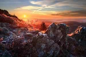 Beginning of the Cold Season by FlorentCourty