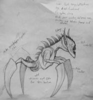 Creature Concept with Notes by lord666belial