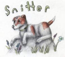 The Plague Dogs - Snitter by Pickledsuicune