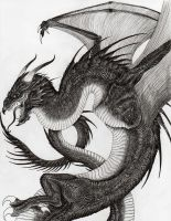 Ancalagon the Black by verreaux