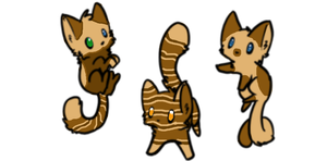 cute cats for sale by SHARK-D0G