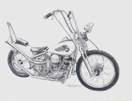 Knucklehead drawing by kathysgallery