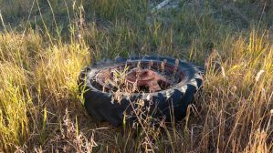 Tractor Tire by PapaGue