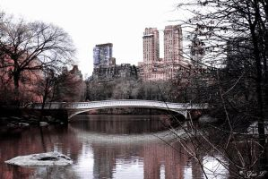infrared central park by Yair-Leibovich