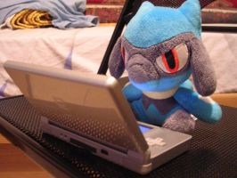 Riolu is Playing with MY DS by Umpherio