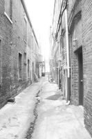 An Alley Right out of NYC by Baron-Von-Coeus