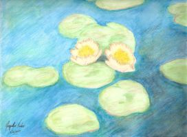 Water lilies in Evening by jacquelynfisher