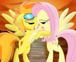 Spitfire and Fluttershy.........kissing :3 by Spitshy