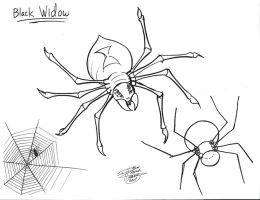 Draw a Spider by Diana-Huang