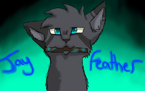 Jayfeather by Darkthekittywolf