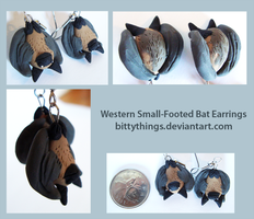 Western Small-Footed Bat Earrings - SOLD OUT by Bittythings