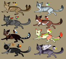 Cat adopts 4 (1 Left) by Moonbeams-Adopts