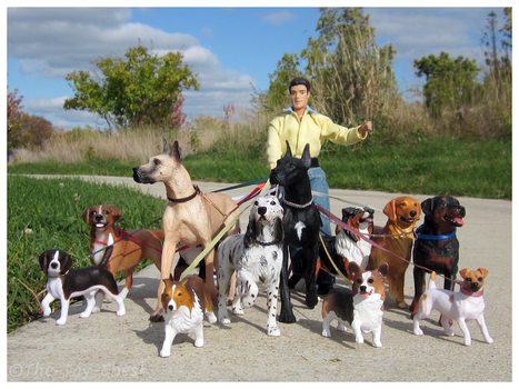 Breyer - The Dog Walker by The-Toy-Chest