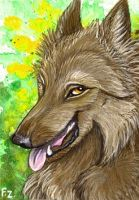 Nimrais ACEO by Foxfeather248