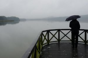 sadness by the RAIN by Dieffi
