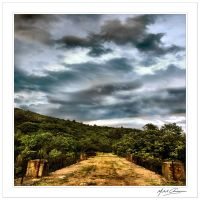 A bridge among the green... by Michel-Lag-Chavarria