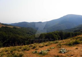 Stara planina mountain by valsomir