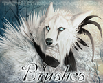 Brush Set by NukeRooster