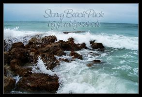 Stormy Beach Pack by flordelys-stock