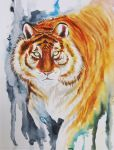 Gold tiger by Gotat