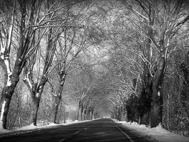 Marchiennes road in snow by April-Mo