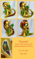 Connie - A Conure-themed Pony by DeeKary