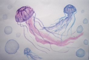jellyfish by TadpoleOfDoom