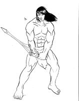 Barbarian 2 by Broxigard