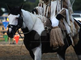 Indian Horse by Marigold-Meadows
