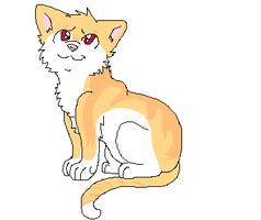 Cat I Adopted by foxopathic
