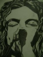 close up Robert Plant by carriefawnsmom