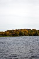 Fall in Wisconsin IV by thriftyredhead