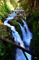 Sol Duc Falls by AzureWindProductions