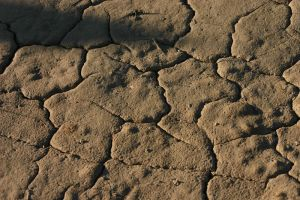 Cracked Mud by FoxStox